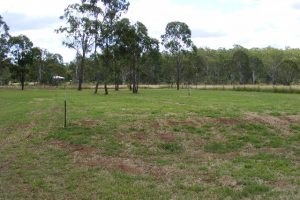Land for sale Wondai property sales